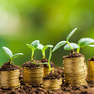 Sustainability Nudura Oman